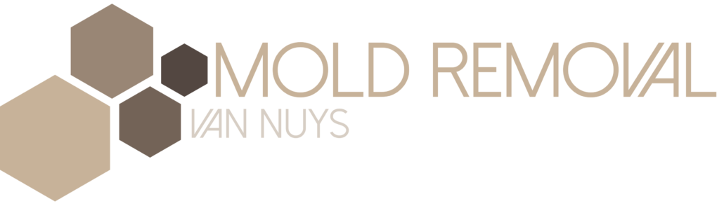 Mold Removal Van Nuys